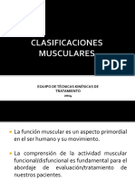 clasificación muscular