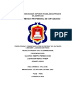 Proy. Empresarial IESTPA luz1.docx