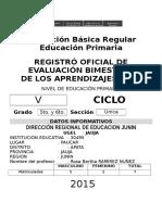 Registro Oficial de Evaluacion 2015