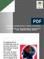Generalidades Del Neurodesarrollo Neurologico