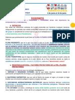 3.PIODERMIAS.6G.pdf