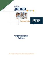 cultura organizacional AIDA