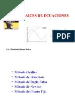 Raices de Ecuaciones2014