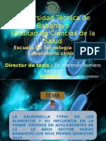 diapositiva tifoidea