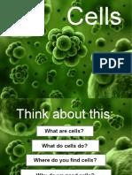yr 8 cells