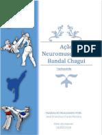 Acao Neuromuscular do Bandal chagui
