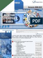 Sectorul Executive Search- Prezentare Rezumativa