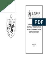 guia-desarrollo-plan-y-tesis UNSM.pdf