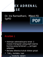 Cortex Adrenal Disease Ok