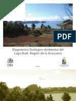 diagnóstico ecológico medioambiental del budi.pdf