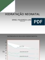 hidratacaofigueiredoI.pdf