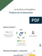 Cogeneracion SAG - oferta 2016