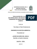 TESIS PARA LIBRO JAVIER NAVARRO DEL AGUILA.pdf
