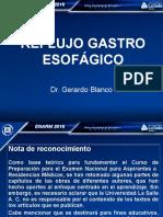 10.-Guia Grafica Ref 20244