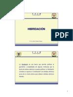 10_Hibridacion (1)