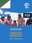 Aplicando Guía Gobernabilidad en Bolivia