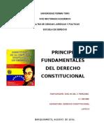 Principios Fundamentales del  Derecho Constitucional