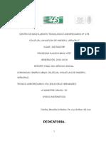 Reporte Final Del Servicio Social Bachillerato