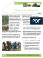 Energy Crops-willow Coppice and Miscanthus