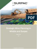 Strategic Mine Planning SurpacWhittle v20