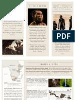 e-portfolio travel brochure- kai galbiso  anth1020