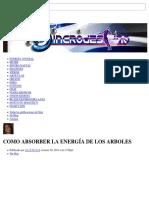 Como Absorber La Energía de Los Arboles - Sincro-Destino