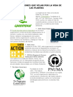 Organizaciones Que Velan Por La Vida de Las Plantas y El Medio Ambiente