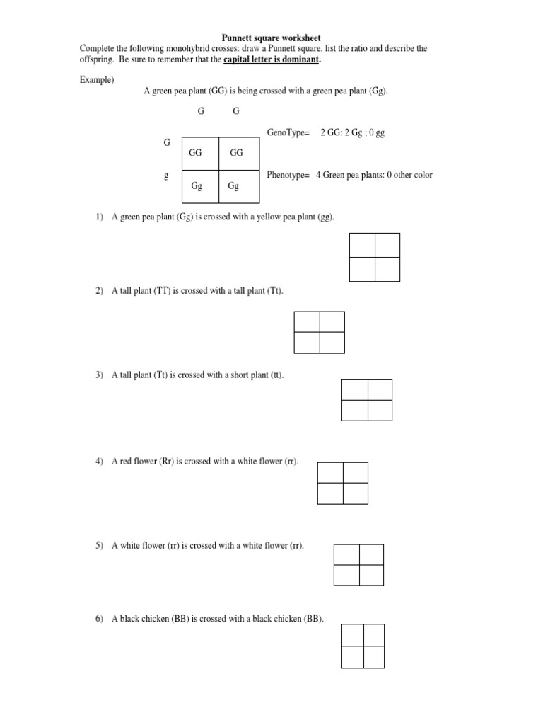 Uncategorized Punnet Square Worksheet worksheet pea plant punnett square answers thedanks worksheet