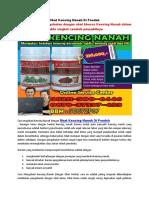 Obat Kencing Nanah Di Pondok
