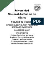 ProtocoloDeInvestigaciónCaMa.docx