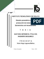 VictorHugoLagunas.pdf