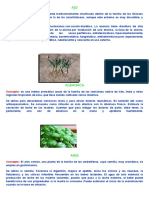 Plantas Medicinales y Animales de Cañete