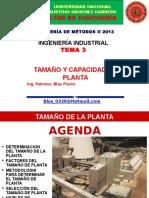 3tamaño de Planta-1