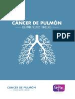 Guia Cancer Pulmon