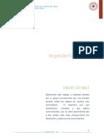 DISEÑO Y CONSTRUCCIÓN DE UN MOLINO DE TIPO MARTILLO