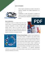 Principales adelantos tecnológicos de la bioquímica.docx