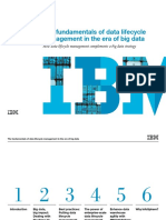 Data Lifecycle Management in the Era of Big Data _ibmc170
