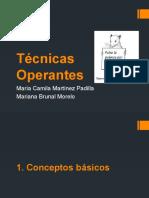 Técnicas Operantes