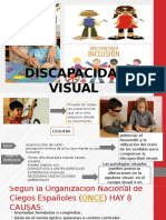 Discapacidad-Visual Con Videos 2016