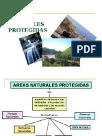 areasnaturalesprotegidas-120702114244-phpapp01