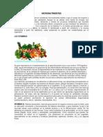 Micronutrient Es