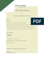 Detencion Policial Delito y Flagrancia