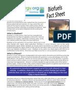 Biorefineries Fact Sheet