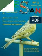 REVISTA 1 AVESAN.pdf