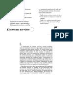 lect4CieCogC-II.pdf