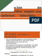Bioquimica Clasificación de Aminoácidos Según Sus Cadenas Laterales.