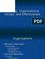 Strategy Organizational Design and Effectiveness