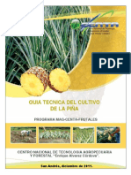 guiatecnicapina2011-140209225929-phpapp01
