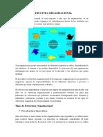 ESTRUCTURA-ORGANIZACIONAL (1)