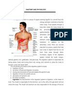 Anatomy and Physiology of the Digestive System